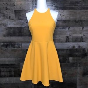 NWT Likely Goldenrod Moore Racerback Mini Dress 6
